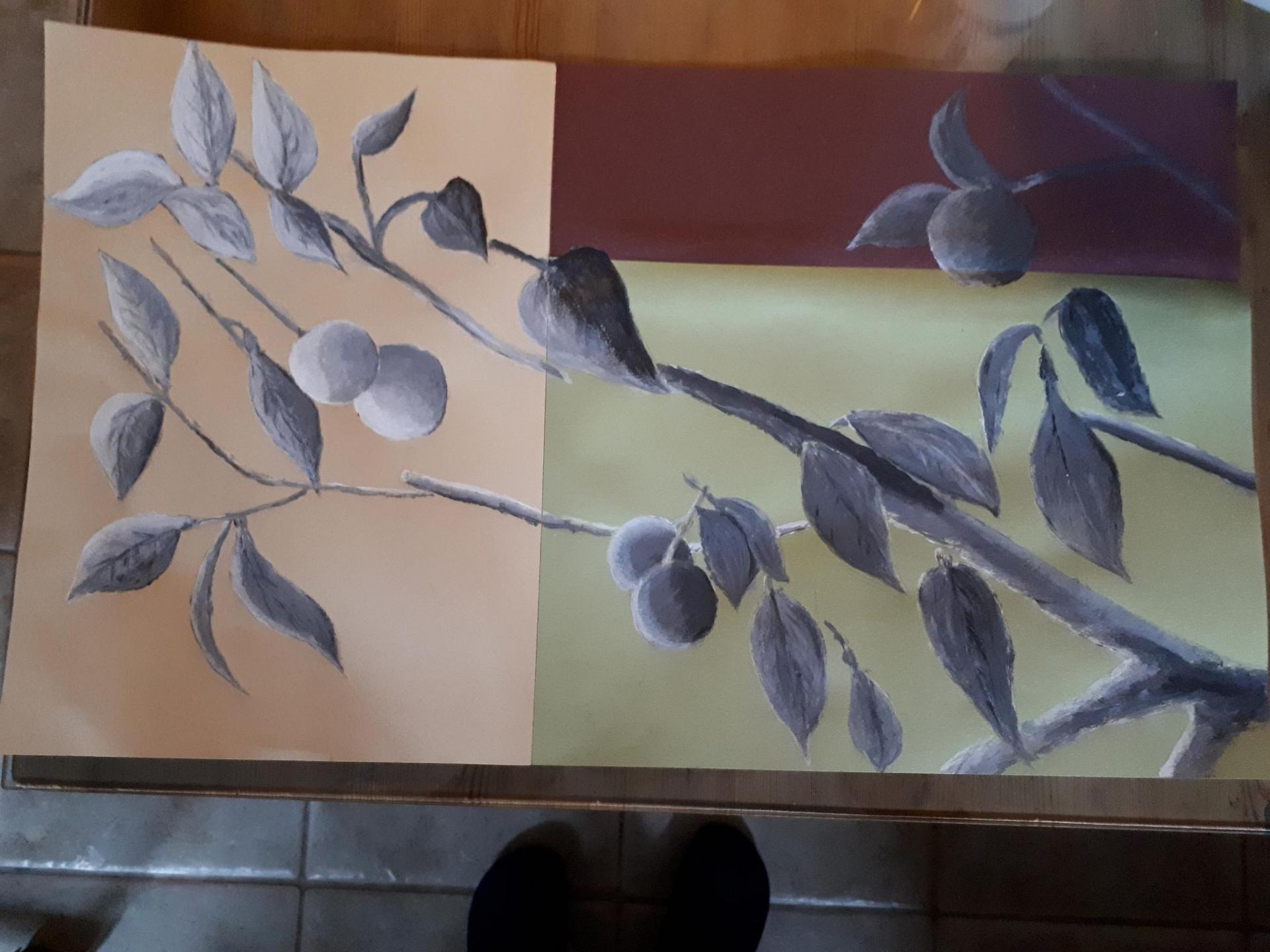 Composition et nuances de gris